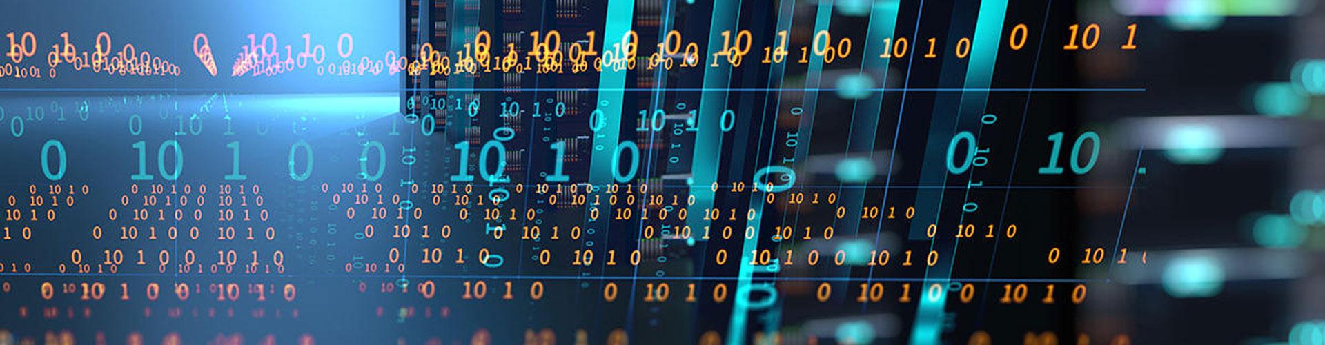 SG Bilişim Network Kurulumu